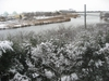 雪の鳥屋野潟