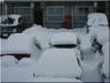3日連続の雪