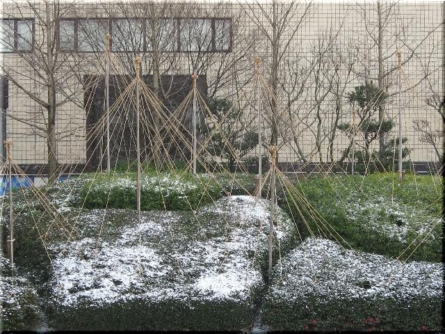 冬支度と初雪⇒5月