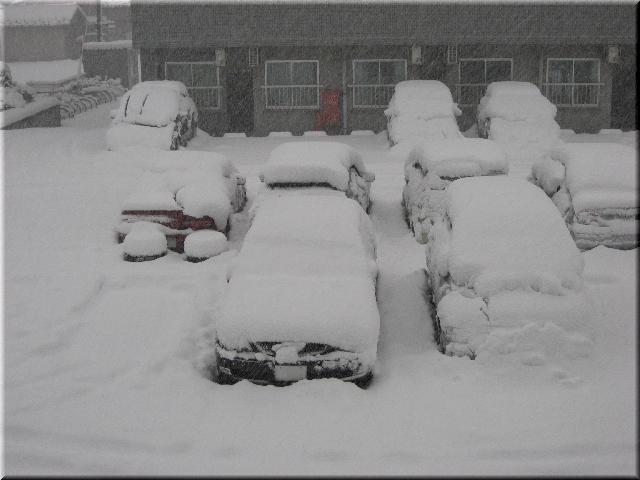 大雪(12月17日・朝)