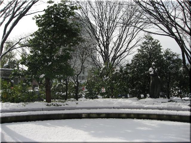 大雪(12月17日・昼)