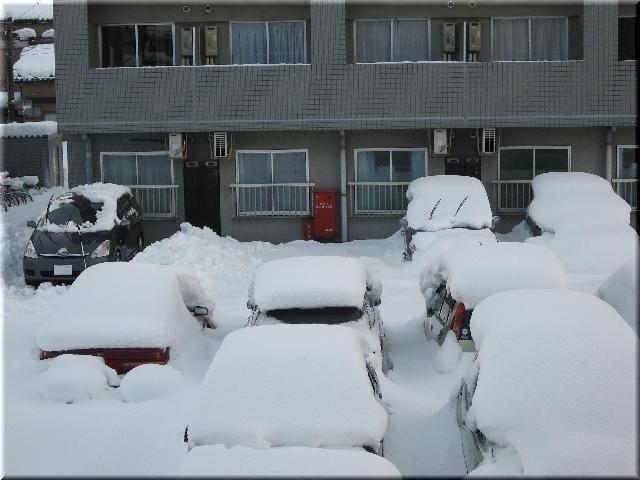 大雪(12月19日・朝)