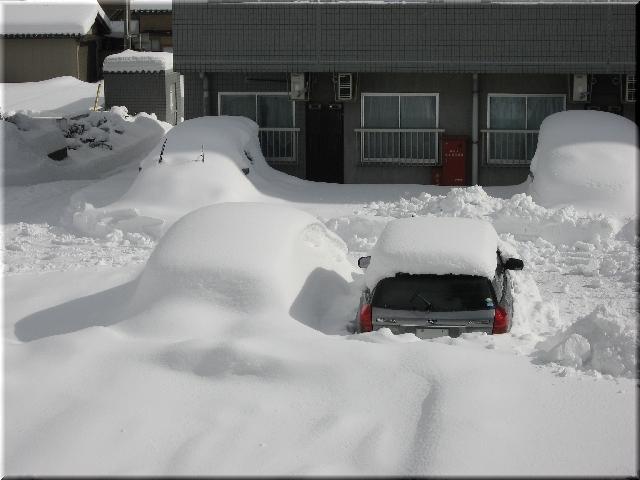 2月の豪雪(2010年)