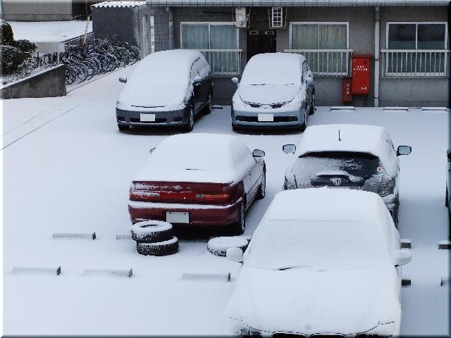 3月18日・雪(2011年)