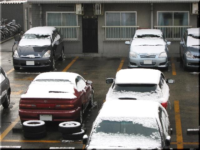 3月27日・雪