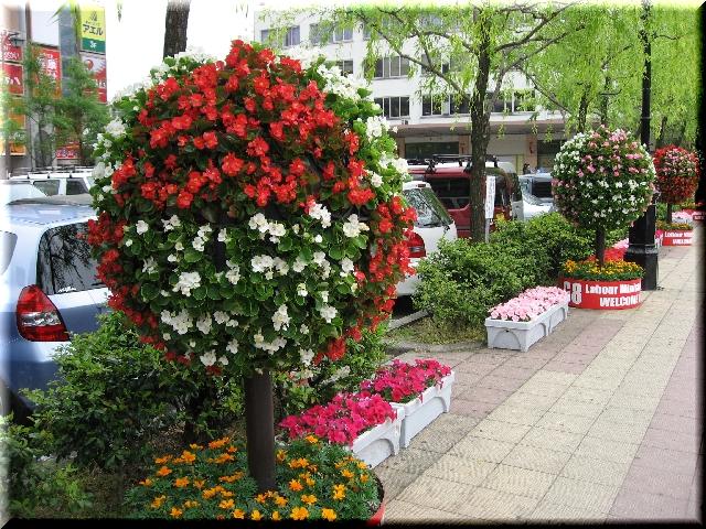 皐月の花スピーカー