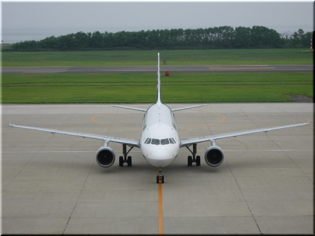 ANA Airbus A320 JA8654
