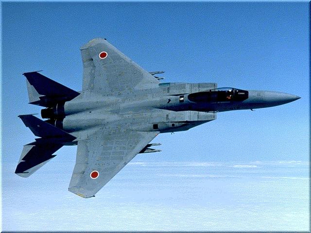 F 15 (戦闘機)の画像 p1_24