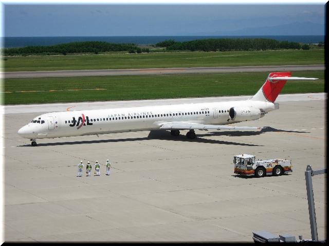 JAL McDonnell Douglas MD-90 JA8065