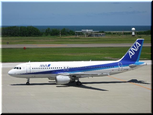 ANA Airbus A320 JA8390
