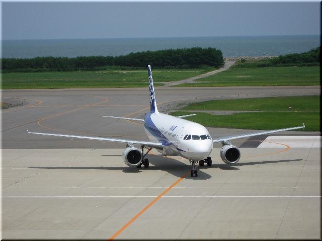 ANA Airbus A320 JA8385