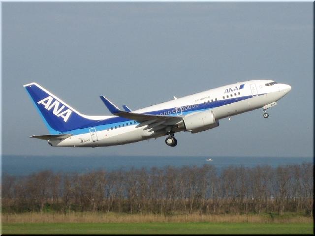 ANA Boeing 737-700 JA12AN