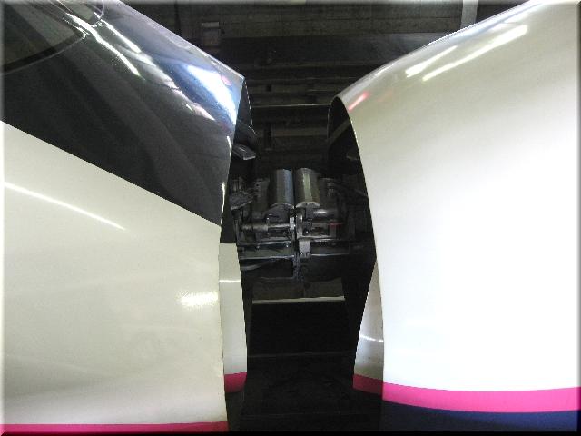 東北・秋田新幹線E2系J59&E3系R4(仙台駅)