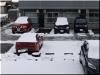 2021年2月3日(雪)